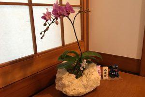 特殊加工の琉球石化岩と胡蝶蘭がアロマの香り 作品番号GF‐003